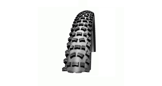 Schwalbe Fat Albert Rear Evolution Reifen